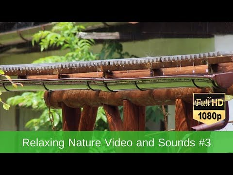 Relaxing Nature Video and Sounds #3 - Rain, Water Sound Singing Birds Ambience, Sleep