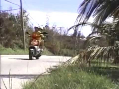Bermuda - Traffic (2003)