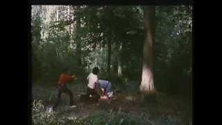 Zwei Männer wollen die Studentin Jeanne vergewaltigen  ( 1979 )