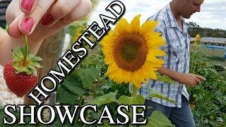 Homestead Showcase Vegetable Garden & Orchard