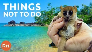 10 Things NOT to Do in Madagascar