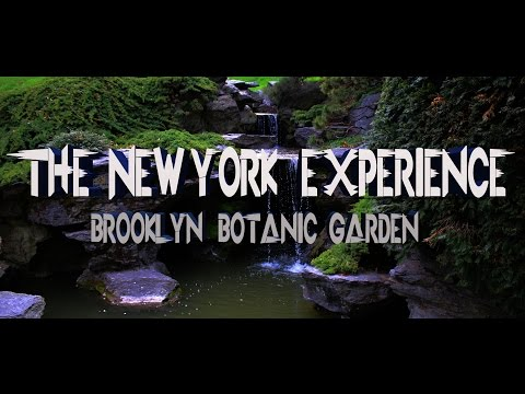 The New York Experience: Brooklyn Botanic Garden
