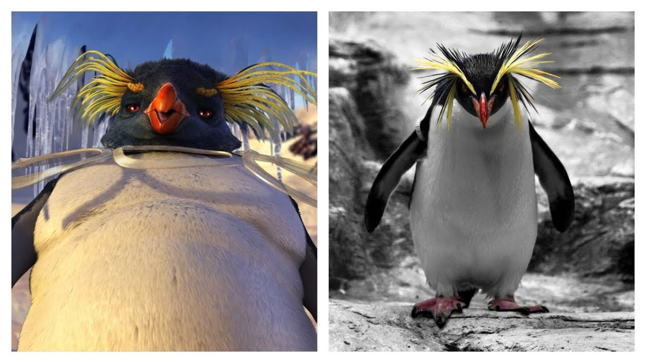 Happy Feet Two Characters In Real Life Youtube