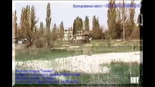 Отдых на юге Украины. Одесская область. КО Сычавка.(2)(Комплекс отдыха