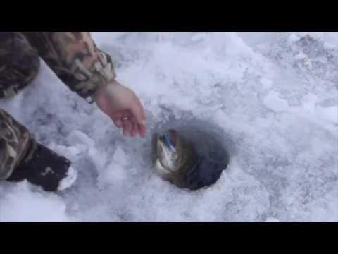 Grand Pines Resort | Fishing on Round Lake Wisconsin | Hayward Wisconsin Fishing Guides