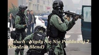 Paluch Nigdy Si Nie Poddawaj 2 ledziu Blend TELEDYSK.mp3