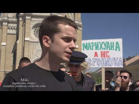 DNEVNJAK - Skup za legalizaciju marihuane