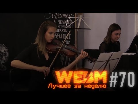 Dank WebM Compilation