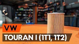Hvordan udskiftes oljefilter og motorolje on VW TOURAN 1 (1T1, 1T2) [GUIDE AUTODOC]