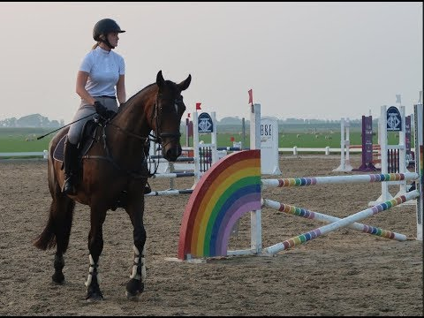 Calinka D'amas Z First 90 Cm | Charlotte Van Nifterick