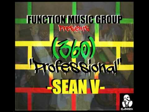 360 Professional  Sean V of FMG