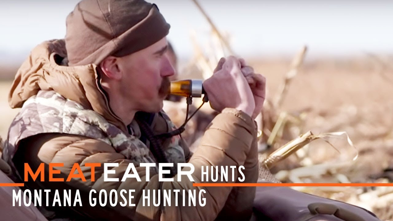 Download Montana Goose Hunting w/ Ryan Callaghan and Miles Nolte | S1E06 | MeatEater Hunts