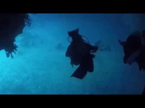 Diving Palau 2016