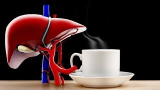 Daily Orbit - Coffee Linked to Liver Health