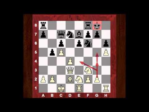 Viswanathan Anand vs Bartlomiej Macieja : Bundesliga /07 2006 : Brief commentary #64