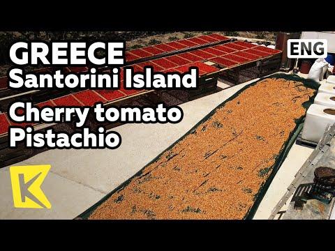 【K】Greece Travel-Santorini Island[그리스 여행-산토리니섬]산토리니의 또 다른 특산품/Cherry tomato/Pistachio/Fava Been