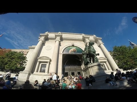NYCTrip - American Museum of Natural History