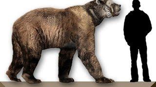 Животные юрского периода/Animals of the Jurassic period
