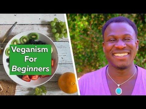 BEGINNER'S GUIDE TO VEGANISM - how to go vegan