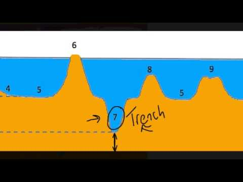 Features Of The Ocean Basin Youtube