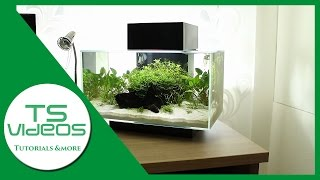 Designer-Aquarium? Fluval Edge 1 Review [Deutsch/German] - TSVideos