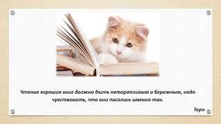 Известные высказывания о библиотеках, книгах и чтении