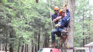 Advanced Tree Care - Emergency Readiness & High Angle Rescue