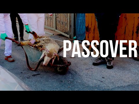 Passover Sacrifice Service In ISRAEL