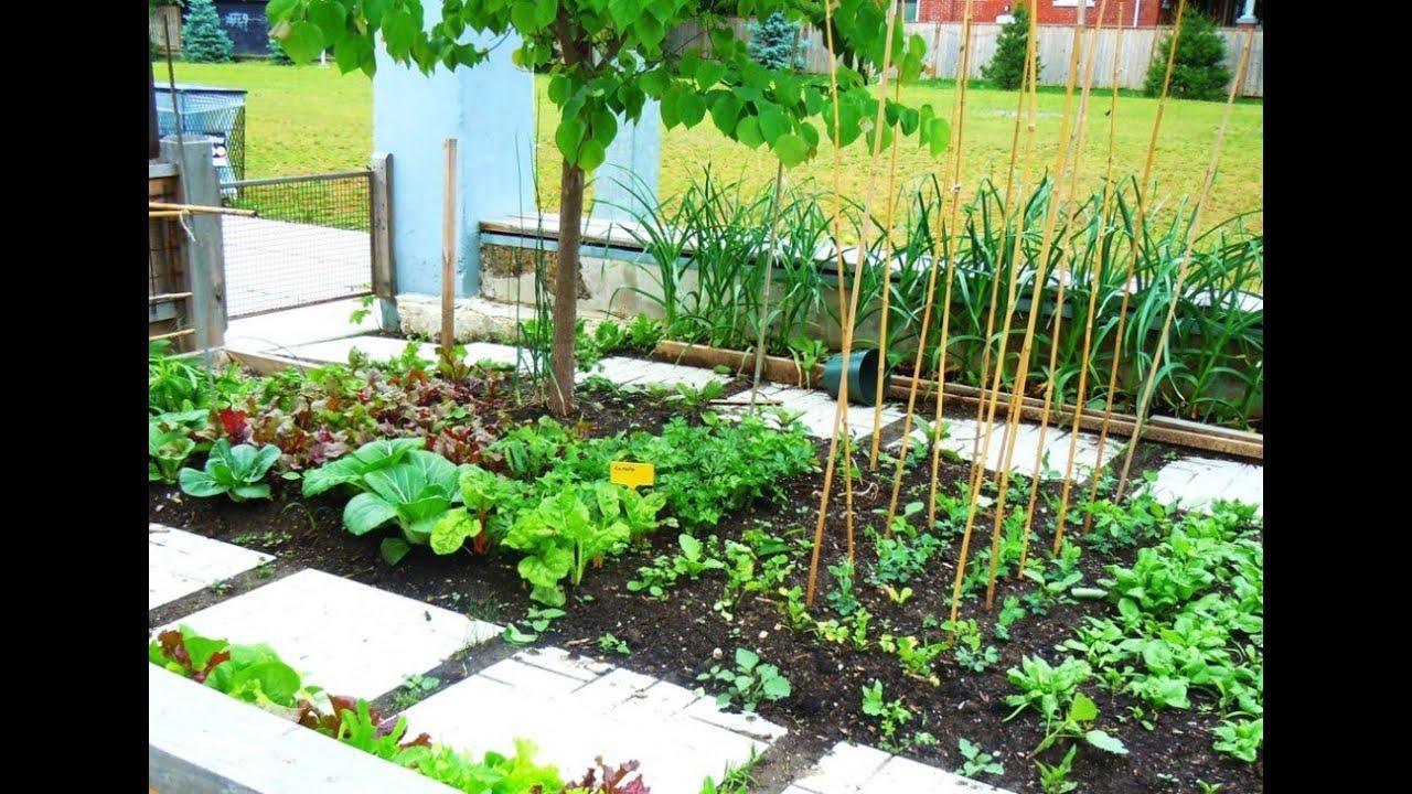 urban gardening tips youtube. Black Bedroom Furniture Sets. Home Design Ideas