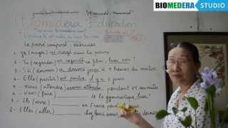 Bài 65: Bài tập chia động từ thì quá khứ kép - Le passé composé (exercices, suite)