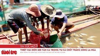 Thiệt hại hơn 330 tấn cá trong vụ cá chết trắng sông La Ngà