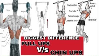 pullups vs chinups Biggest Difference | Rubal Dhankar