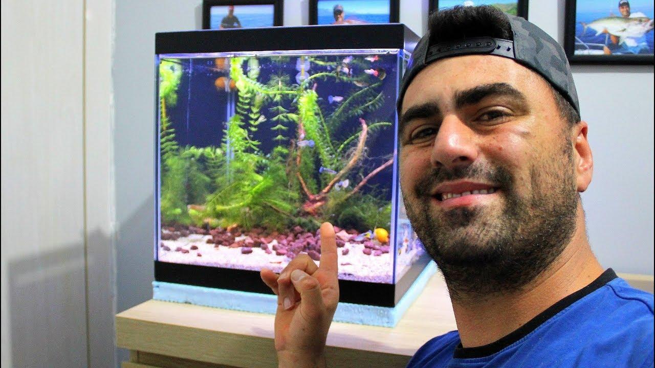 Odama Bitkili  Akvaryum Kurdum / İçinde Yüzlerce Karides ve Balık Var