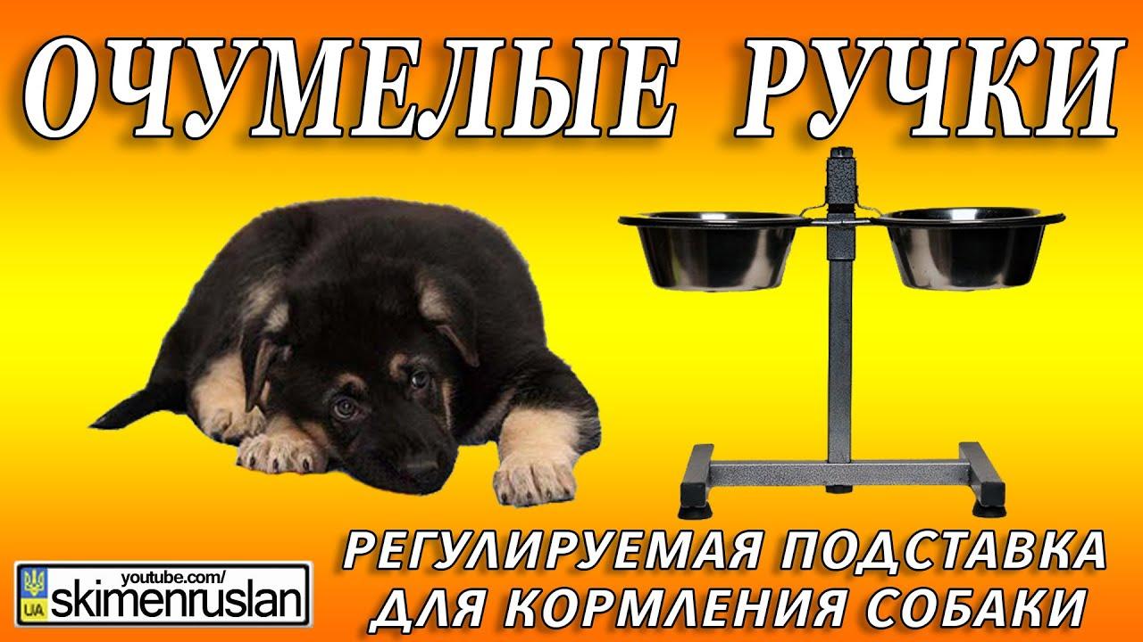 Подставка для кормления собак своими руками 649