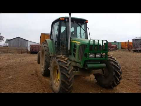 Feeding Silage to Beef Cattle