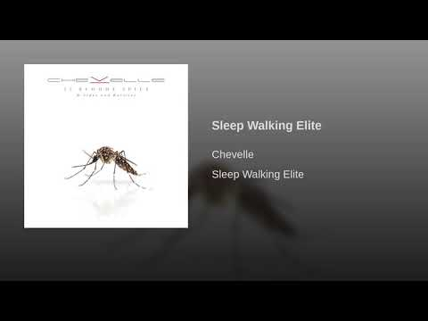 Sleep Walking Elite Mp3