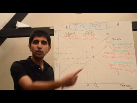 Y1/IB 28) Subsidy - Detailed Market and Stakeholder Analysis