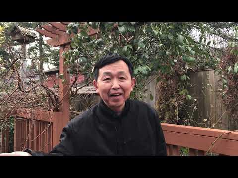 黄河边播报:种种迹象表明:郭文贵没有去过朝鲜,见三胖在梦中!