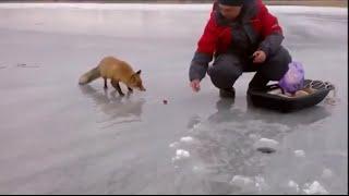 Ice Fishing Adventures