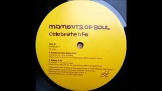 Moments Of Soul - Falling