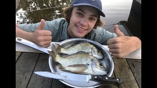 MONSTER Bream - Catch n Cook (Caught in CAST NET)