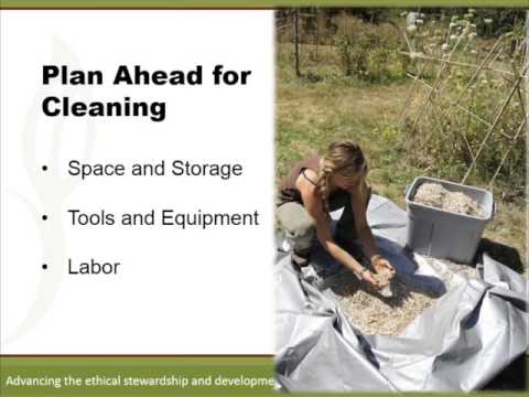 Organic Seed Production Six Webinar Series Part 5: Seed Cleaning
