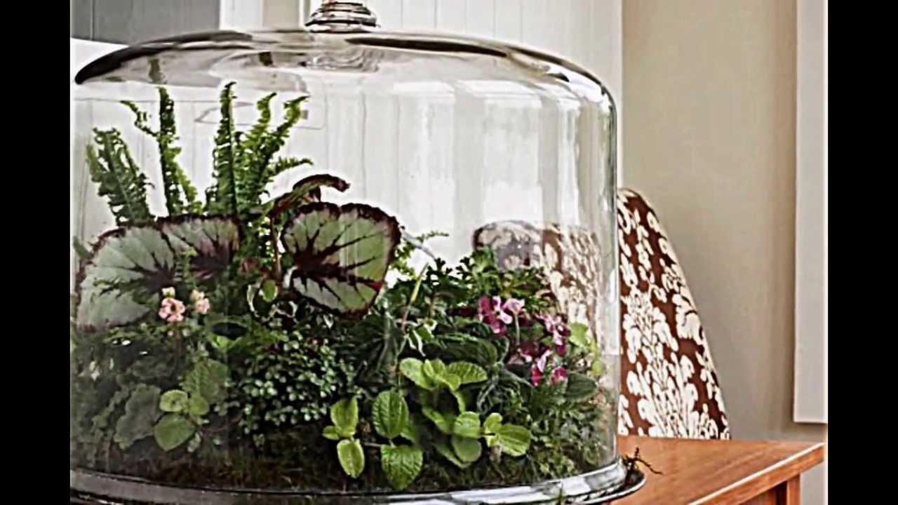 terrarium designs dienen als dekorativen mini garten im interieur youtube. Black Bedroom Furniture Sets. Home Design Ideas