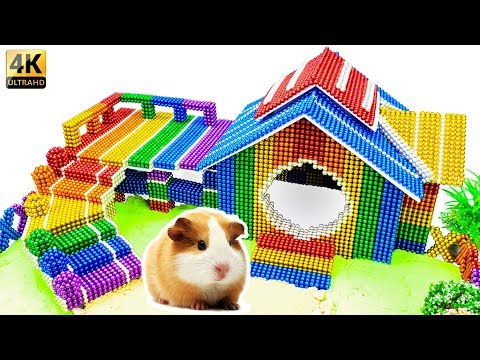 DIY - Build Guinea Pig House (Hamster Pet) With Magnetic Balls (Satisfying) - Ma