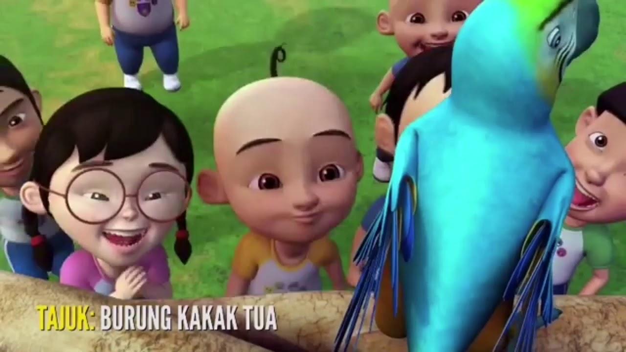 Download Upin Dan Ipin Bernyanyi Burung Kakak Tua In Hd Mp4 3gp Codedfilm