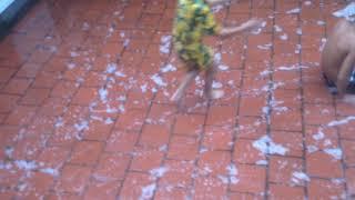 Các trẻ trâu chơi bóng bằng xà phòng - Nguyễn Công Hoan Vlogs