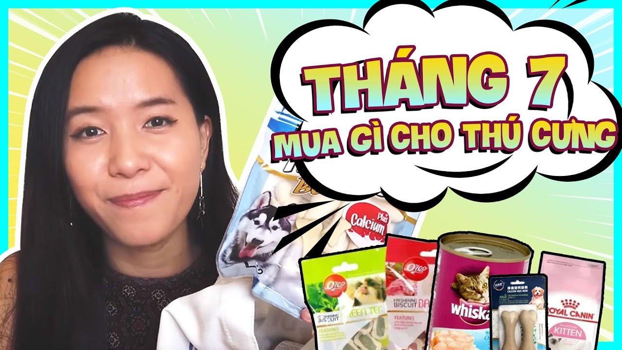 Umi review Đồ Ăn cho Thú Cưng | Umi TV