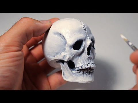 Human Skull. Sculpting Process