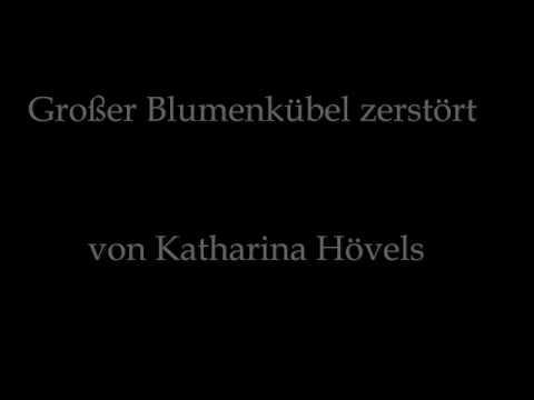 Blumenkübel: traurig und verständnislos - Dramatisierte Lesefassung