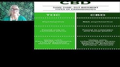 The Efficacy of High CBD Low THC for Better Outcomes in Medical Marijuana